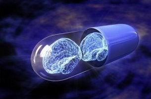 Nootropika - Pille mit zwei Gehirnen