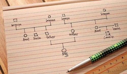 Wie du Schritt für Schritt ein Genogramm erstellen kannst