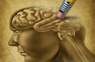 Vergessenskurve - Zeichnung eines Gehirns, das wegraddiert wird