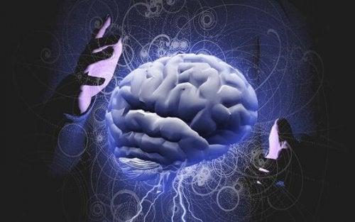 Gehirn, das zwischen zwei Händen gehalten wird