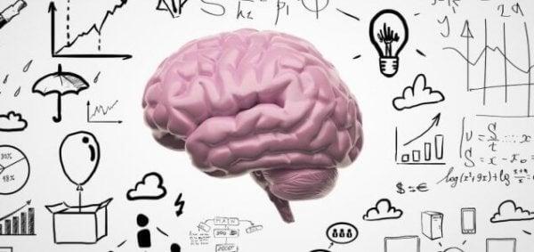 Bild eines Gehirns umgeben von Symbolen