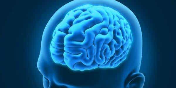 3 interessante neurologische Erkrankungen