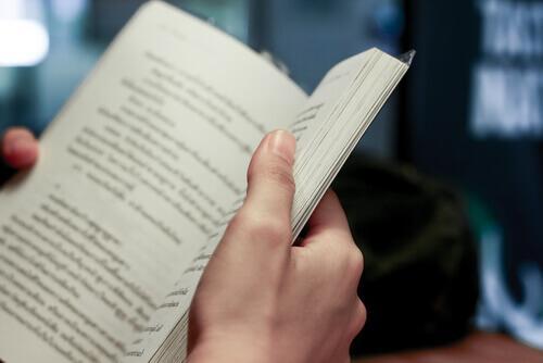 Eine Person hält ein offenes Buch in den Händen.