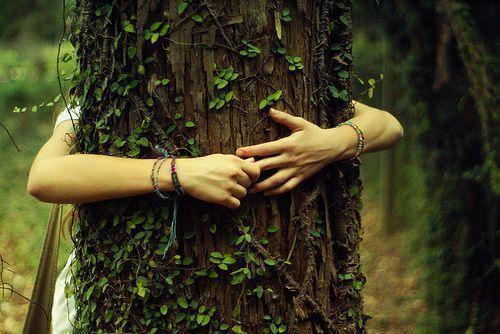 Zeichen der Dankbarkeit: Ein Mädchen umarmt einen Baum.