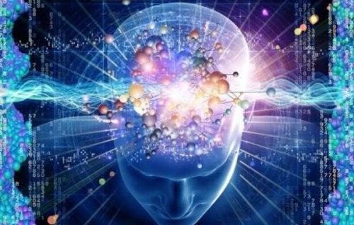 Gehirn mit Formeln und Zahlen