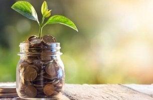 Finanzielle Situation - Glas mit Münzen und Pflanzen