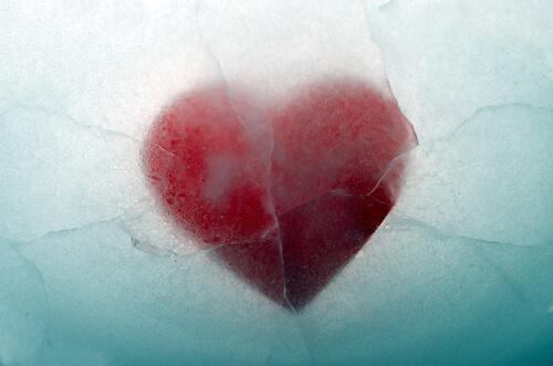 Ein rotes Herz liegt inmitten von Eis.