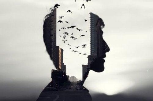 Selektives Gedächtnis – Wieso erinnern wir manche Dinge und manche nicht?