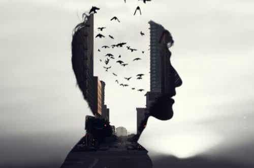 Selektives Gedächtnis - Wieso erinnern wir manche Dinge und manche nicht?