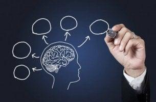 Warum Psychologie studieren? - menschliches Gehirn verstehen
