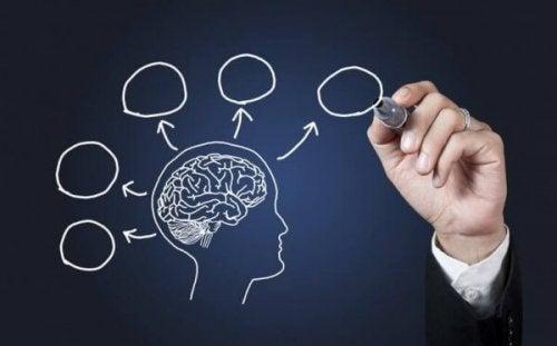 10 Gründe, wieso man Psychologie studieren sollte