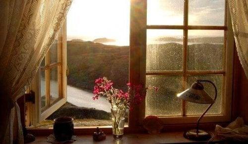 Foto aus einem Zimmer heraus mit offenem Fenster, draußen sieht man eine Landschaft