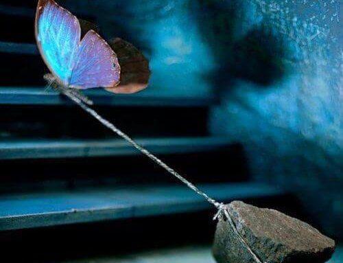 Ein Schmetterling zieht einen schweren Stein hinter sich her.