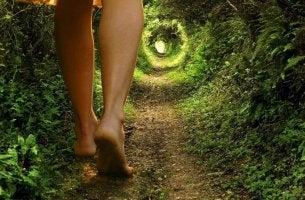 Theorie des aktiven Lebens - Tunnel durch's Grüne