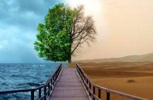 Behandlung von Depressionen mit der Gestalttherapie - Weg zwischen Wüste und Meer