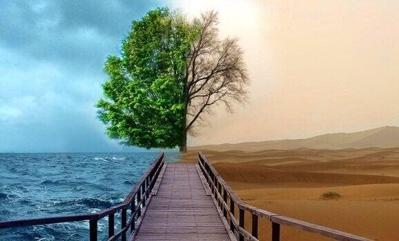 4 Schlüssel der Gestalttherapie zur Behandlung von Depressionen