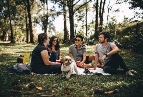 Freunde, die ein Picknick machen