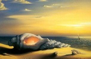 Inselrinde - eine Muschel am Strand