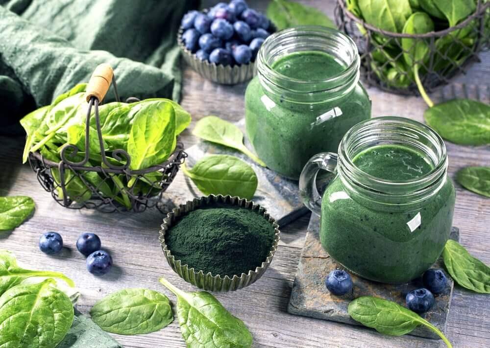 Vorteile von Spirulina - Spirulina in verschiedenen Formen