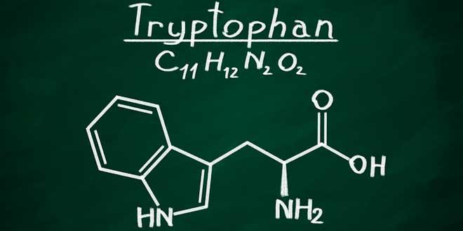 Strukturformel von Tryptophan
