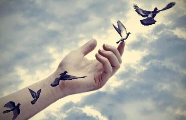 Vögel fliegen aus einer Hand in den Himmel