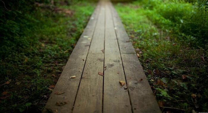 Hölzerner Weg im Grünen