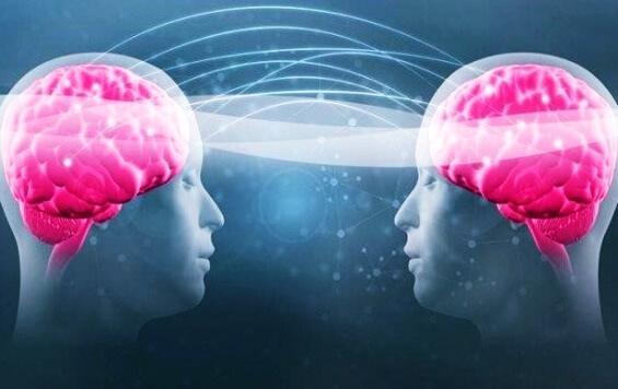 Tryptophan und Serotonin - zwei rosa Gehirne