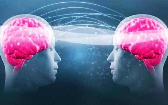 Tryptophan und Serotonin: Finde heraus, wie du dein Wohlbefinden steigern kannst