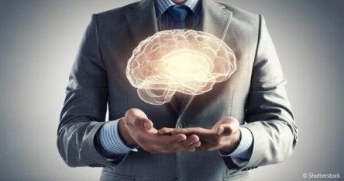 7 Rätsel des menschlichen Gehirns