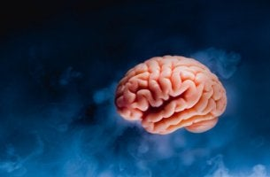 Die Darstellung eines Gehirns vor einem dunklen Hintergrund.