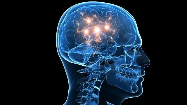 Neuronen im Gehirn eines Menschen