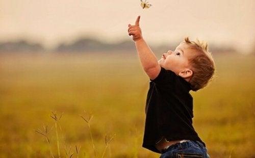 Junge berührt Schmetterling