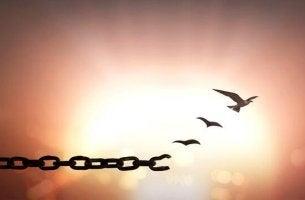 Vergebung - Kettenglieder werden zu Vögeln
