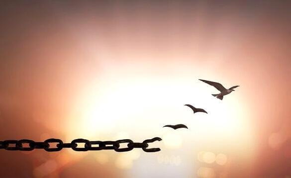 Auf Kaution freikommen - was steckt eigentlich dahinter?
