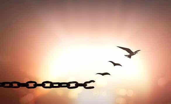 7 Zitate, die dir helfen, zu vergeben