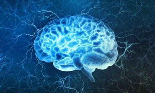 Leuchtendes Gehirn