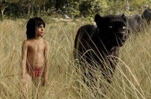 Verfilmung vom Dschungelbuch: Das Kind Mogli steht neben Panther Bagheera in einem Feld.