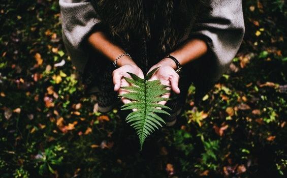 Den Sinn des Lebens finden wir durch innere Gelassenheit