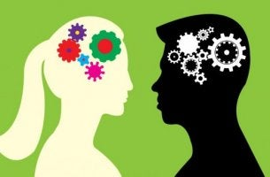 Die Unterschiede zwischen männlichem und weiblichen Gehirn sind grafisch dargestellt