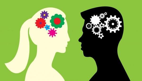 Gibt es Unterschiede zwischen dem männlichen und weiblichen Gehirn?