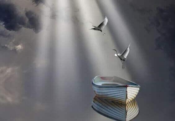 Kraniche fliegen aus einem Boot