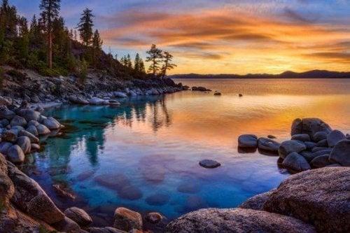 Eigenschaften von Wasser - Blick auf ein Seeufer im Sonnenuntergang