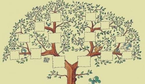 Zeichnung eines Familienstammbaums mit leeren Feldern, zum selbst ausfüllen.