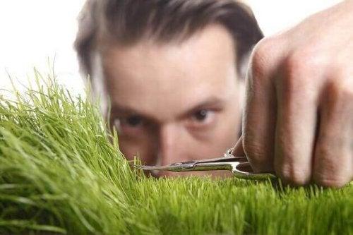 Ein Mann schneidet mit einer Nagelschere Gras