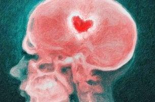Herz leuchtet mitten im Gehirn auf