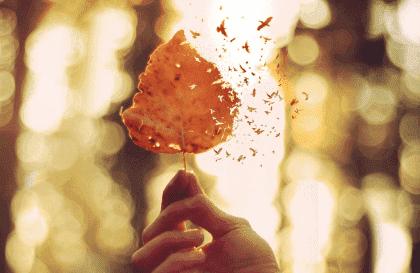 5 Wege, um emotionale Schmerzen auszudrücken