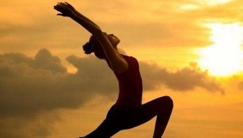 Seitai: Die Kultur der Harmonie und der Gesundheit