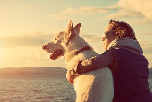 Frau sitzt mit ihrem Haustier am Strand