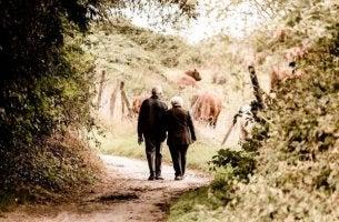 Ein älteres Pärchen spaziert auf einem Feldweg.
