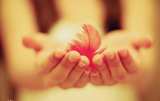 Die Freundlichkeit - eine Kraft, die jede Mauer einzureißen vermag